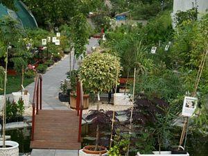 Wágnerk Kert - Kertészet